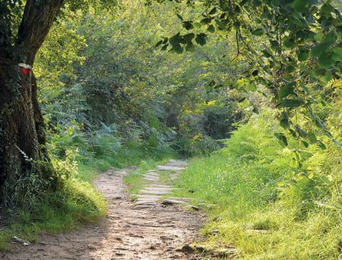 Ibilbidea: Igeldotik Oriora